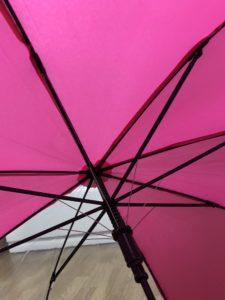 イオン子供の傘